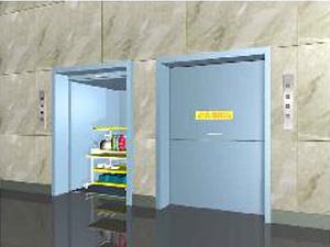 <b>地平式双台杂物电梯</b>